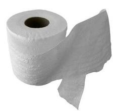 Toilet Tissue - 300 Sheet 2 Ply